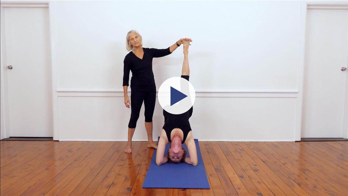 Yoga Vastu Iyengar Yoga online videos